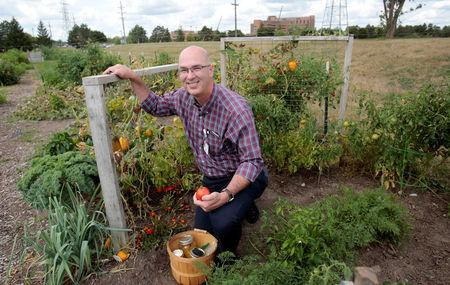 Dr. Brian Halloran. a vascular surgeon at Saint Joseph Mercy Ann Arbor, shows the vegetables he's growing in his garden across from Saint Joseph Mercy hospital in Ypsilanti, Michigan, U.S., August 23, 2017. Picture taken August 23, 2017. REUTERS/Rebecca Cook