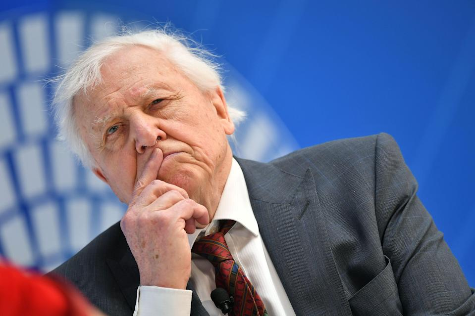Sir David Attenborough warns of 'man-made disaster on global scale' in climate change film