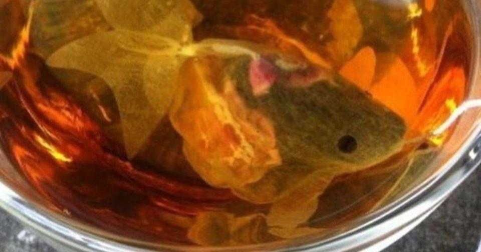 As the adorably-designed tea bag was submerged in hot water, the color of the tea takes on an orange tinge, creating the perfect illusion of a fish swimming in water. (Photo courtesy of Ivana Sarevska)