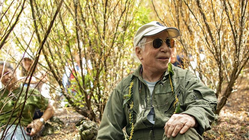 Der Musiker Paul Simon im Wald. Foto: Anna Kim/Honolulu Star-Advertiser/AP