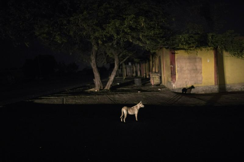 In this May 14, 2019 photo, a dog is illuminated by a car during a black out in Maracaibo, Venezuela. Venezuela holds the world's largest oil reserves as well as vast water resources to fill hydroelectric dams. It long had a state-of-the-art power grid that sold excess electricity to neighboring countries. (AP Photo/Rodrigo Abd)