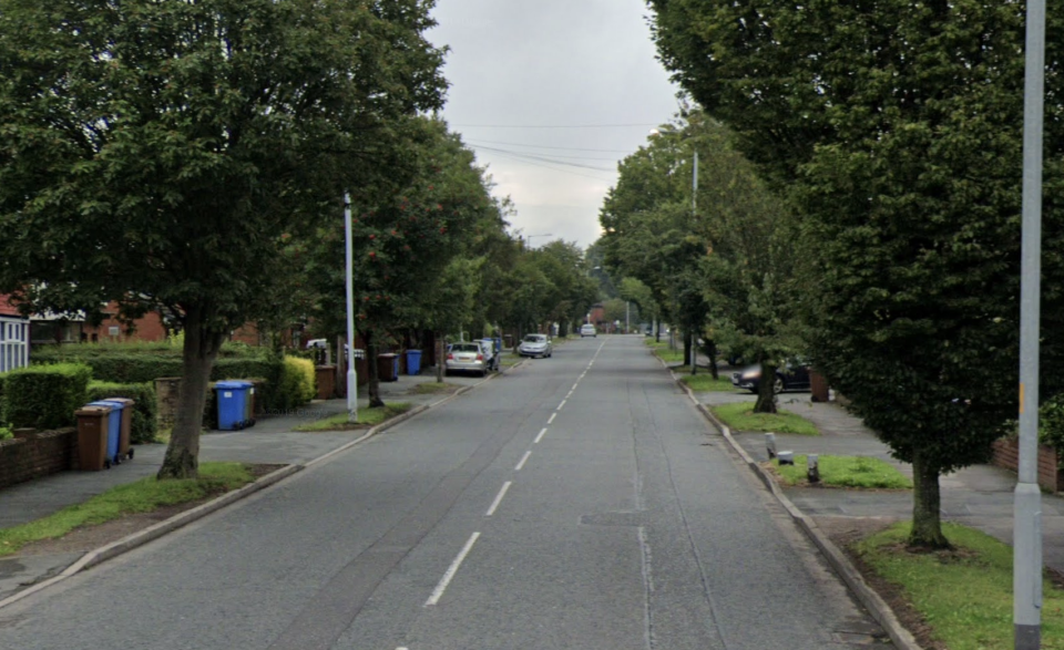 The incident took place on Garners Lane in Stockport. (Google)