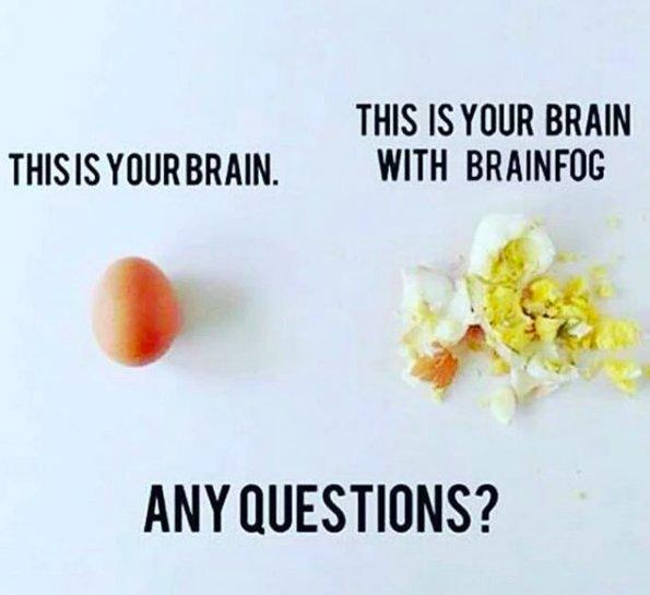 this is your brain: egg. this is your brain with brain fog: smashed egg. any questions?