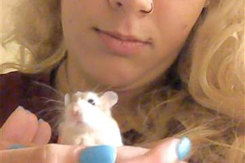 Belen Aldecosea claims airline staff told her to flush her hamster down the toilet