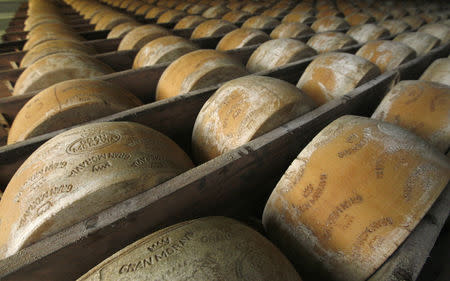 FILE PHOTO - Wheels of parmesan are stored on shelves to mature at a dairy plant in Litovel