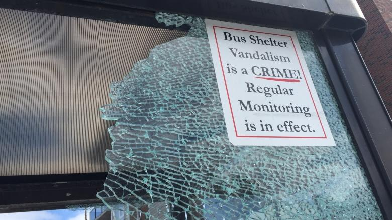 Halifax Transit stands behind glass shelters after vandalism spree