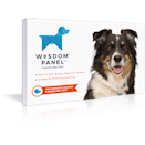 <p>Dog owners will love this <span>Wisdom Panel 3.0 Dog Breed Identification DNA Test Kit</span> ($80).</p>