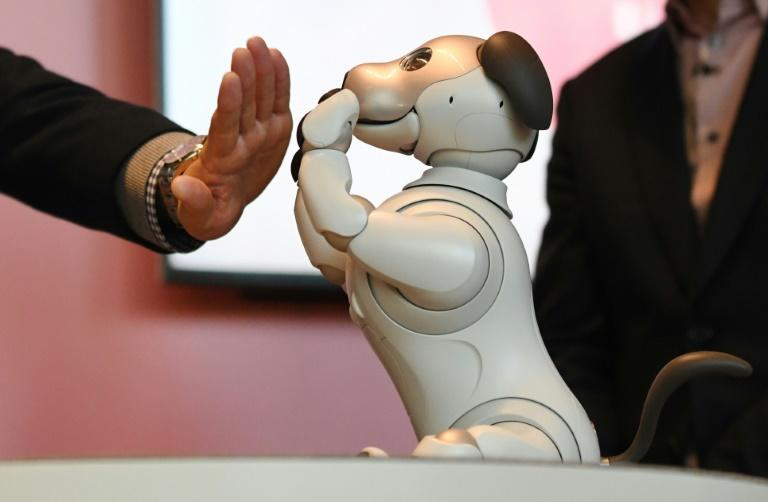 The Aibo dog comes with a hefty price tag of nearly $3,000