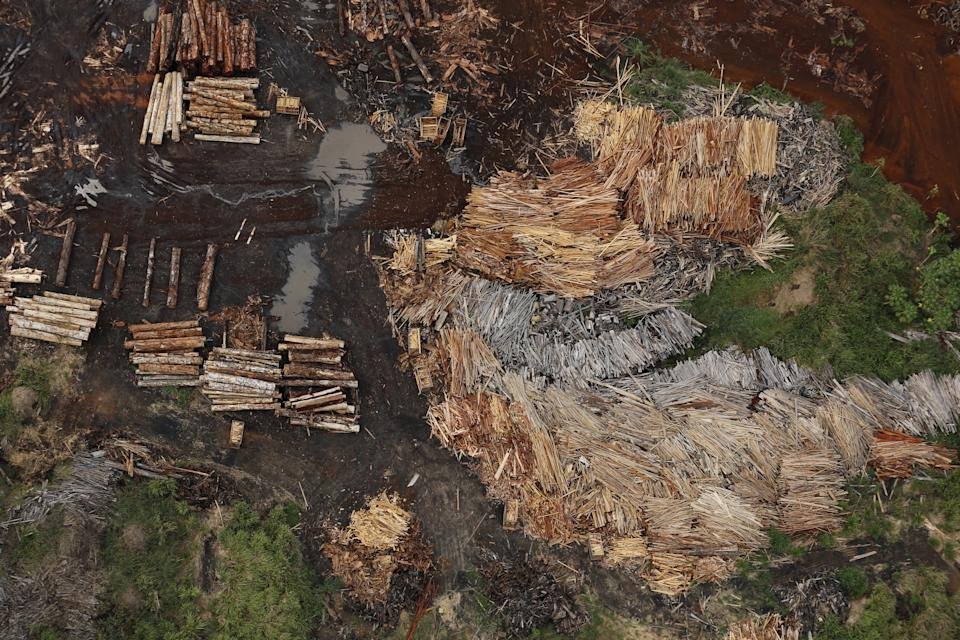Sawmills that process illegally logged trees from the Amazon rainforest are seen near Rio Pardo, in the district of Porto Velho, Rondonia State, Brazil, September 3, 2015. The town of Rio Pardo, a settlement of about 4,000 people in the Amazon rainforest, rises where only jungle stood less than a quarter of a century ago. Loggers first cleared the forest followed by ranchers and farmers, then small merchants and prospectors. Brazil's government has stated a goal of eliminating illegal deforestation, but enforcing the law in remote corners like Rio Pardo is far from easy. REUTERS/Nacho DocePICTURE 5 OF 40 FOR WIDER IMAGE STORY