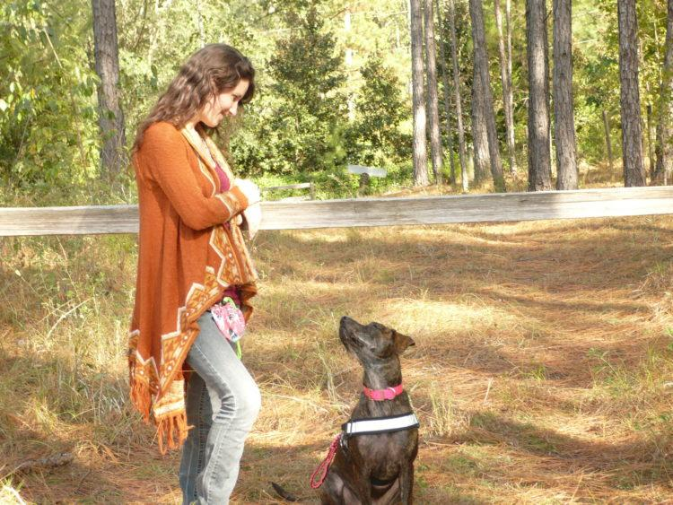a young woman is looking at her service dog in the woods