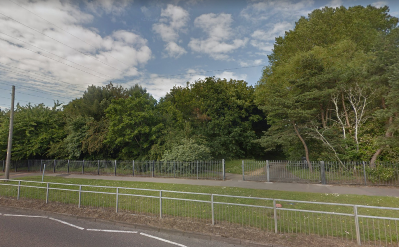 The attack took place at Sherborn open space in the Canford Heath area of Poole, Dorset (Picture: Google)