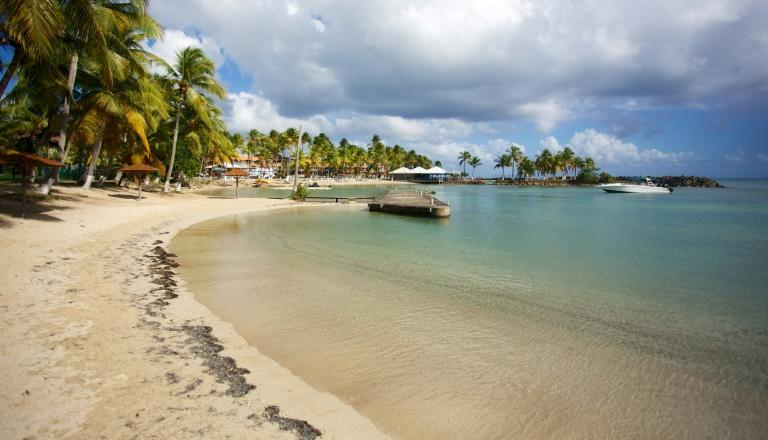 If you make it to the beach in Guadeloupe, you might well have it all to yourself