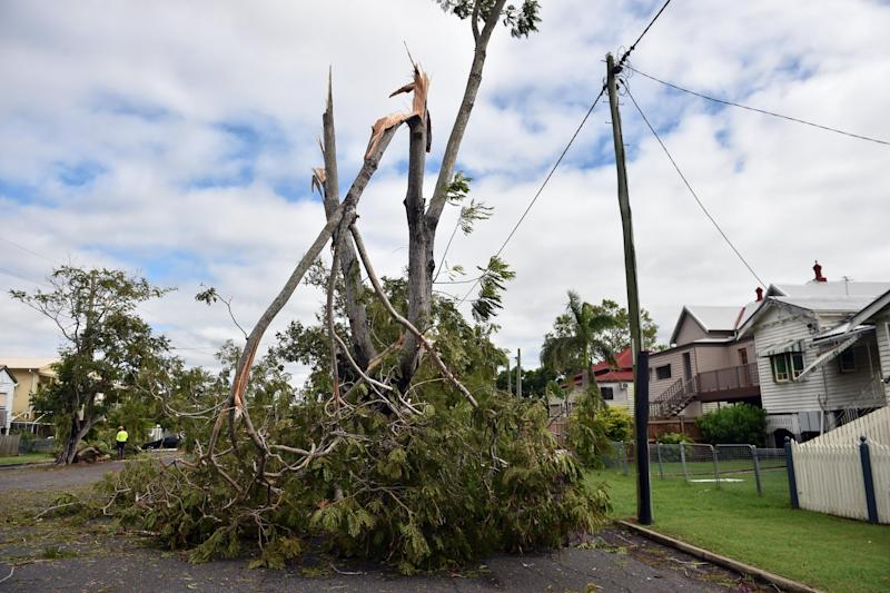 Tree branches torn down by Tropical Cyclone Marcia pictured in the northern Queensland town of Rockhampton on February 21, 2015 (AFP Photo/Peter Parks)