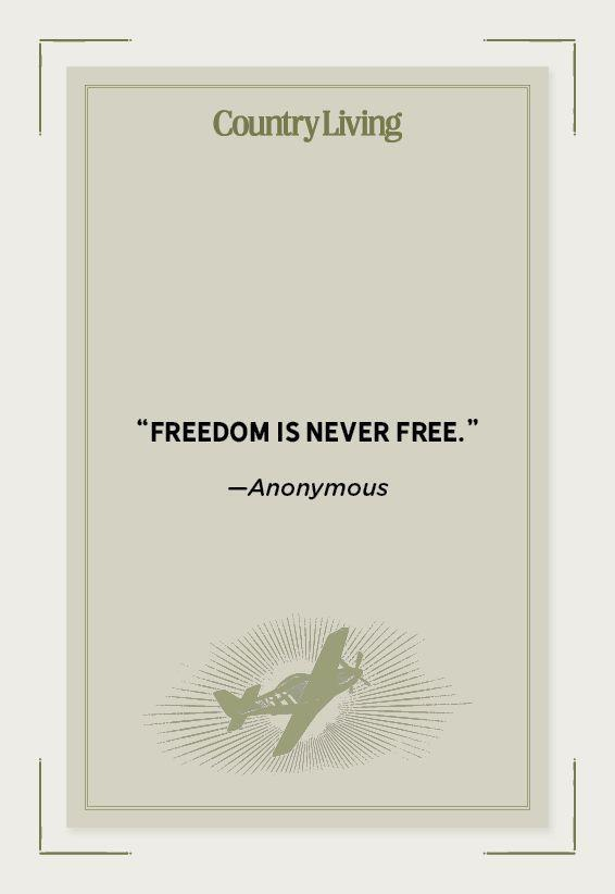 """<p>""""Freedom is never free.""""</p>"""