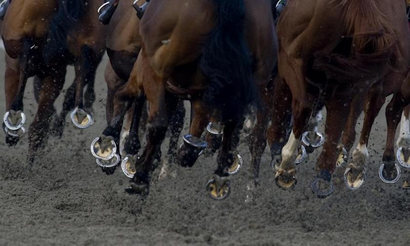 Kempton host a meeting of all-weather racing at the track on Monday.
