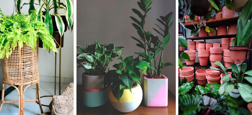 Planters made from natural materials or ones with organic finishes are all the rage. Images: Courtesy Plant People
