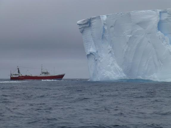 The Amaltal Explorer is dwarfed by a tabular iceberg during the Antarctic voyage.