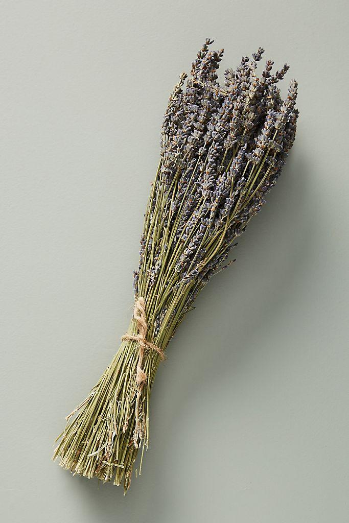 Dried Lavender Bouquet. Image via Anthropologie.