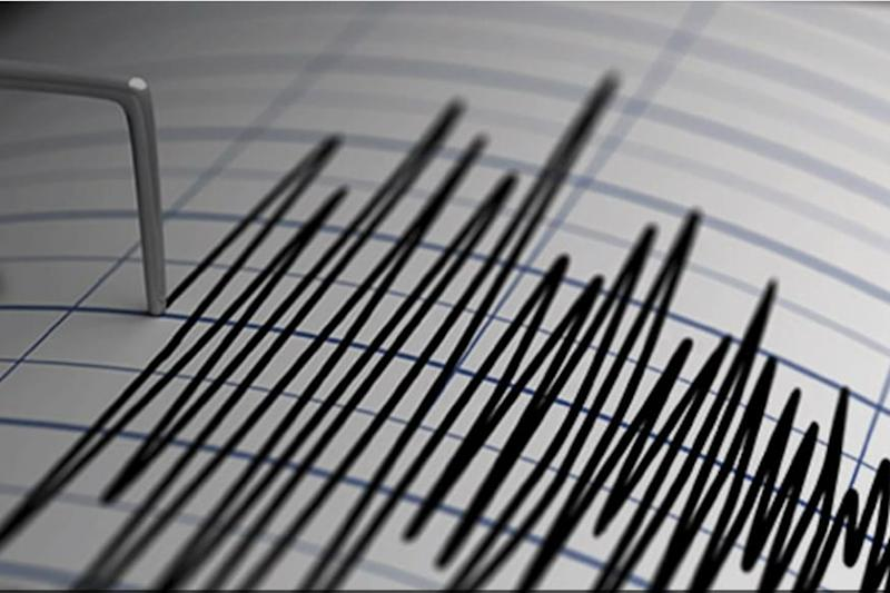 3.5 Magnitude Earthquake Hits Maharashtra's Palghar District, No Casualties Reported