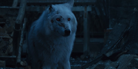 GoT Director Gives Reason Jon Snow Didn't Pet Ghost Goodbye
