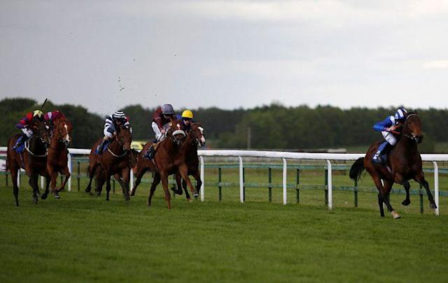 There has been money for a number of un-raced runners across today's tracks (Photo by Alan Crowhurst/Getty Images)