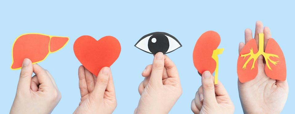 """<span class=""""caption"""">Deemed consent, or 'opt-in,' organ donation is a significant departure from the practices of health-care consent in Canada.</span> <span class=""""attribution""""><span class=""""source"""">(Shutterstock)</span></span>"""