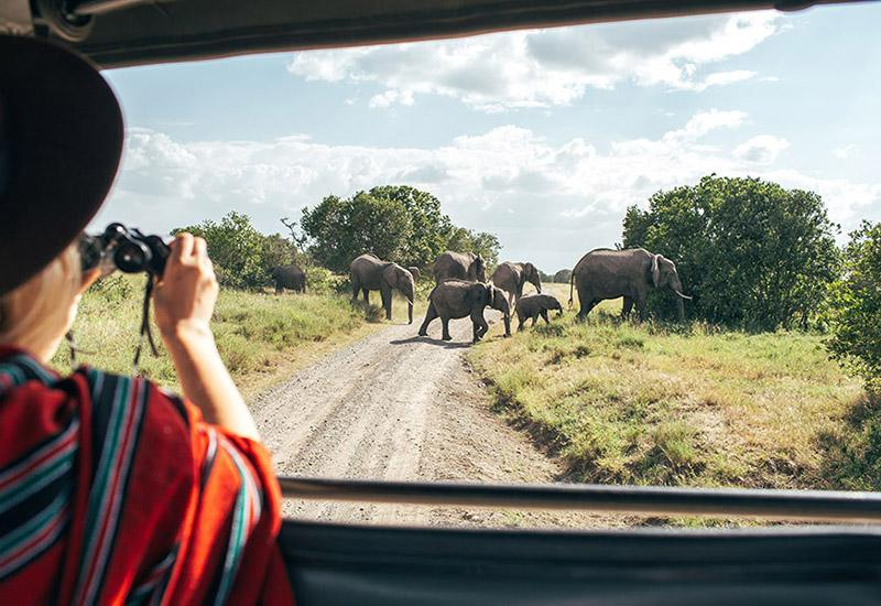 <p>The land of the original safari, Kenya is a home to diverse national parks and game reserves where visitors can get the rare chance to witness magnificent animals in their natural habitat. Best of all, parks are easily accessible so you can go swap your plane for a safari 4x4 in no time!</p>