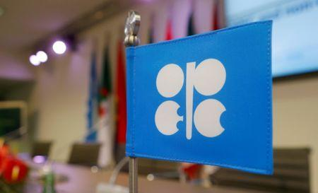FILE PHOTO: A flag with the OPEC logo is seen before a news conference in Vienna