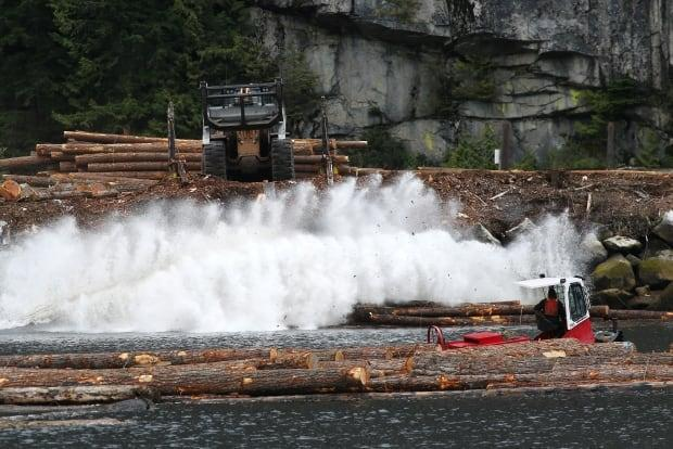 A log driver watches as a pile of logs are pushed into the water at Squamish Mills Ltd. in Howe Sound near Squamish, B.C.