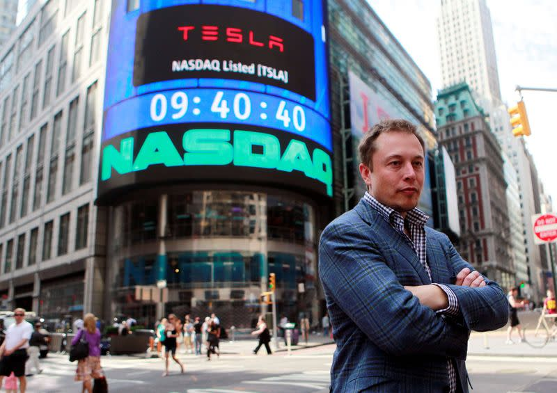 FILE PHOTO: CEO of Tesla Motors Elon Musk poses during a television interview after his company's initial public offering at the NASDAQ market in New York