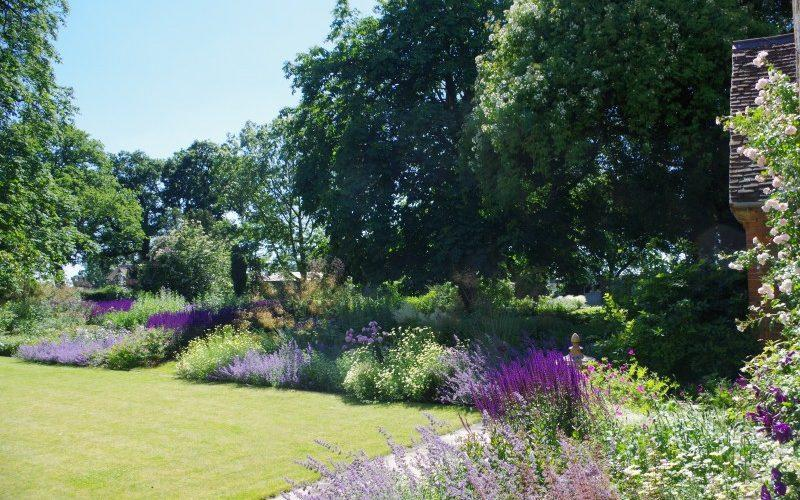 The peaceful gardens at Ossington House are on the grounds of a former vicarage - National Garden Scheme