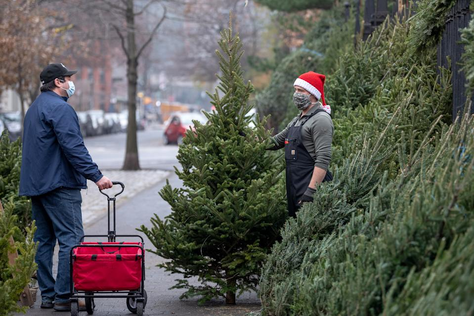 The National Christmas Tree Association credits growing demand for real Christmas trees to the pandemic. (Photo: Alexi Rosenfeld/Getty Images)