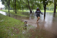 A woman walks her dog through a footpath flooded by Tropical Storm Henri in Bushnell Park in Hartford, Connecticut, on Sunday, Aug. 22, 2021. (AP Photo/Ted Shaffrey)