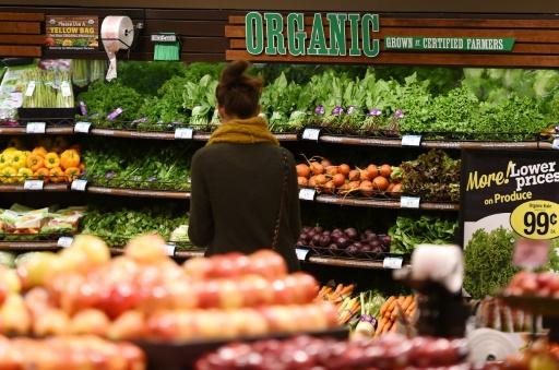 <p>In dieting, low-fat or low-carb are the same: study</p>