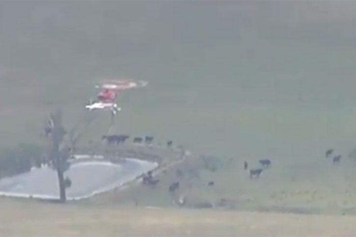 Water-bombing aircraft are at the scene. Image: 7 News