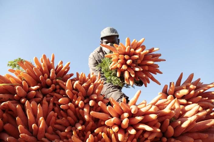 This market vendor arranges his carrots for sale in Mbare, Zimbabwe, on Wednesday.