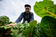 """Andrew Tsui of Rooftop Republic sees the farms as a way for people to reconnect with how sustainable food can be produced in what he calls the current """"instant-noodle city lifestyle"""" that produces so much waste"""