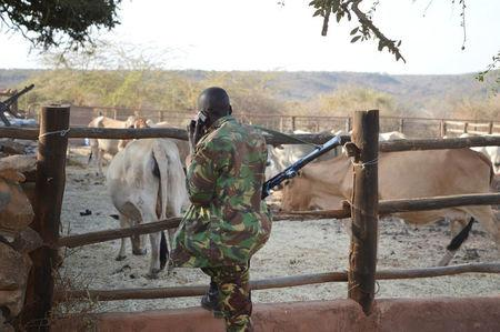 A Kenyan police officer talks on his mobile phone as he looks at cattle after he and his colleagues were deployed to guard Sosian ranch following the killing of Tristan Voorspuy a British co–owner of the Sosian ranch in the drought-stricken Laikipia region, Kenya, March 6, 2017. REUTERS/Stringer
