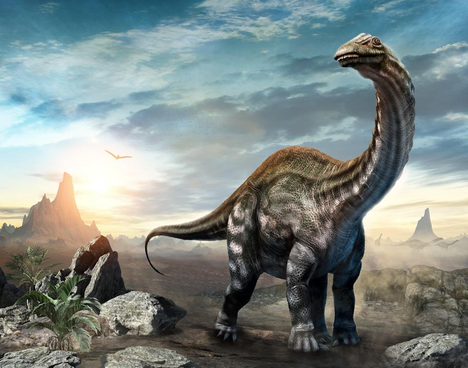 Researchers found that plant-eating species tended to disappear first, which in turn made ecosystems unstable and put other dinosaur families at risk of collapse (Getty Images/iStockphoto)