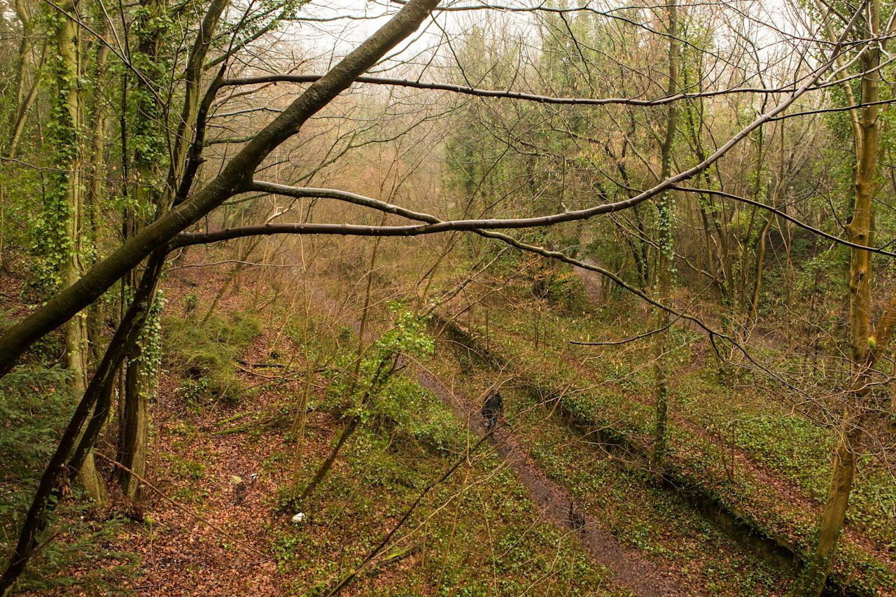 A dog walker strolls along the track-bed at the site of the shut-down former train station at West Meon in Hampshire