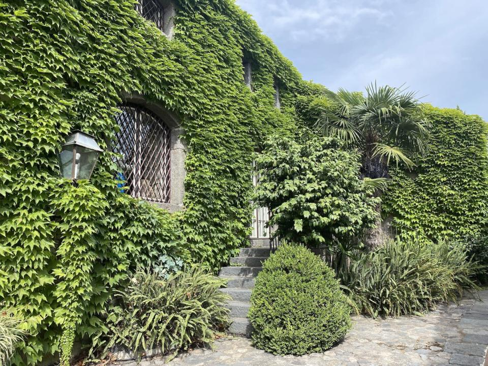 Villa Don Arcangelo all'Olmo Sicily ivy-covered exterior