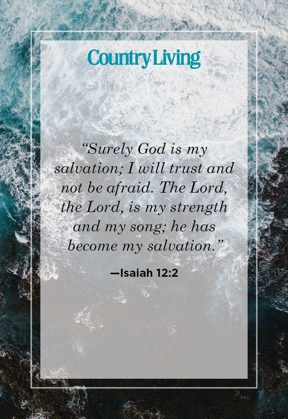 20 Encouraging Bible Verses About Strength