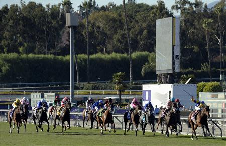 Nov 1, 2013; Arcadia, CA, USA; Richard Hughes aboard Chriselliam leads the field to the finish during race nine of the 2013 Breeders' Cup Championships at Santa Anita Park. Richard Mackson-USA TODAY Sports