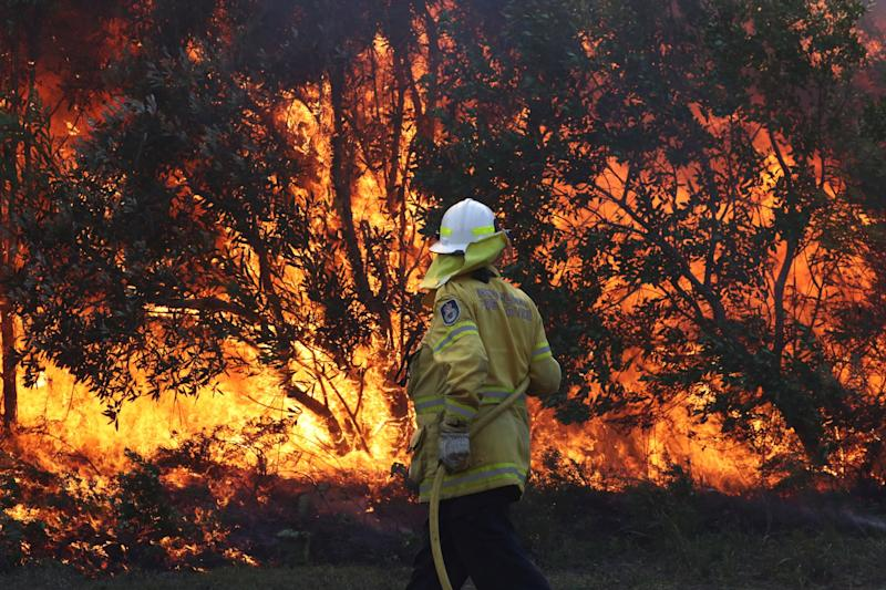 Firefighters battle bushfires in Angourie, northern New South Wales (Reuters)