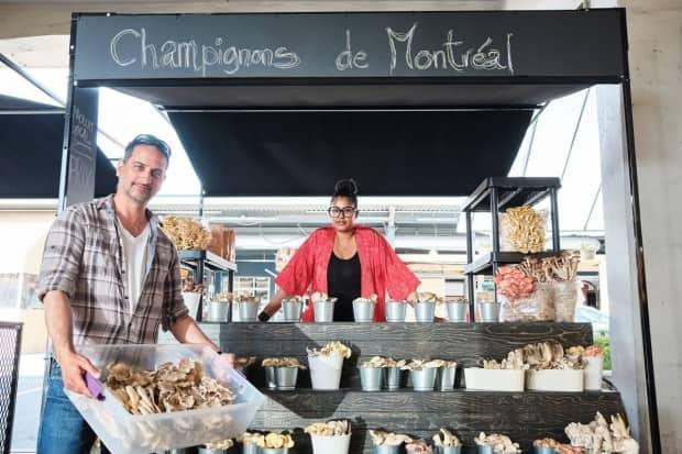The turnkey market stall, which can be rented by the day, is ready to welcome young entrepreneurs in the agriculture industry. (Vivien Gaumand - image credit)