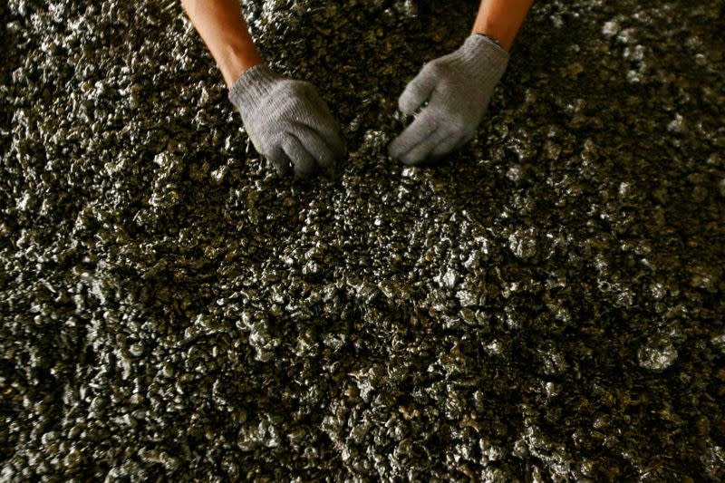 FILE PHOTO: A worker displays nickel ore in a ferronickel smelter owned by state miner Aneka Tambang Tbk at Pomala district in Indonesia