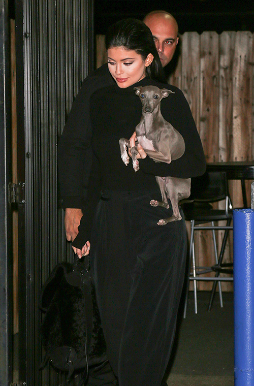 Kylie Jenner's make-up is usually so flawless we were actually beginning to wonder if she had discovered a way of airbrushing herself in real life. However, she proved she is just human like the rest of us, when she stepped out for dinner with her boyfriend Tyga and her dog Norman in LA recently, sporting some very questionable contouring.