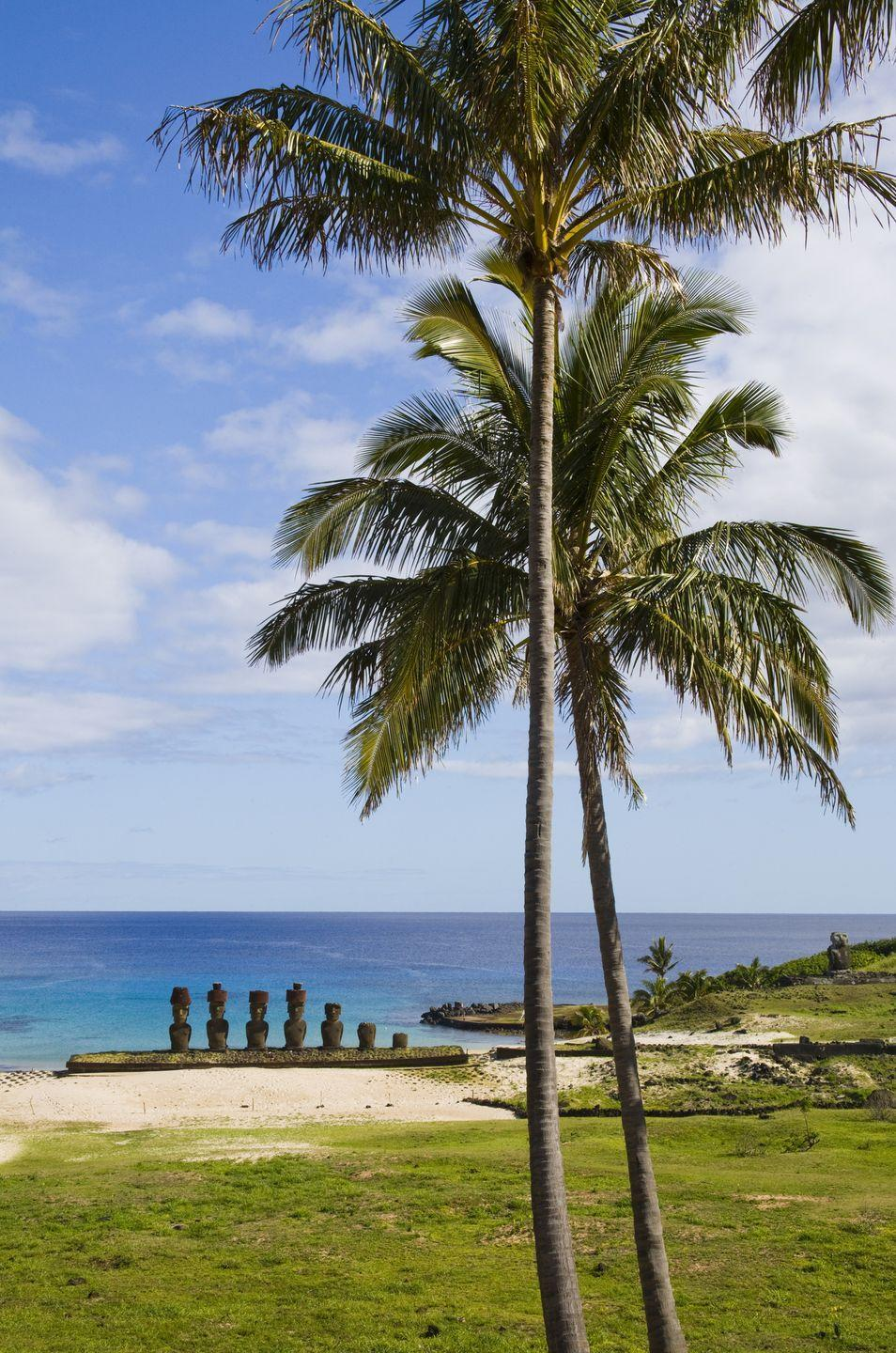 <p>An unusual site on the otherwise rocky coast of Easter Island, the white sand beach at Anakena is also home to several Maoi statues carved by the Rapa Nui people.</p>