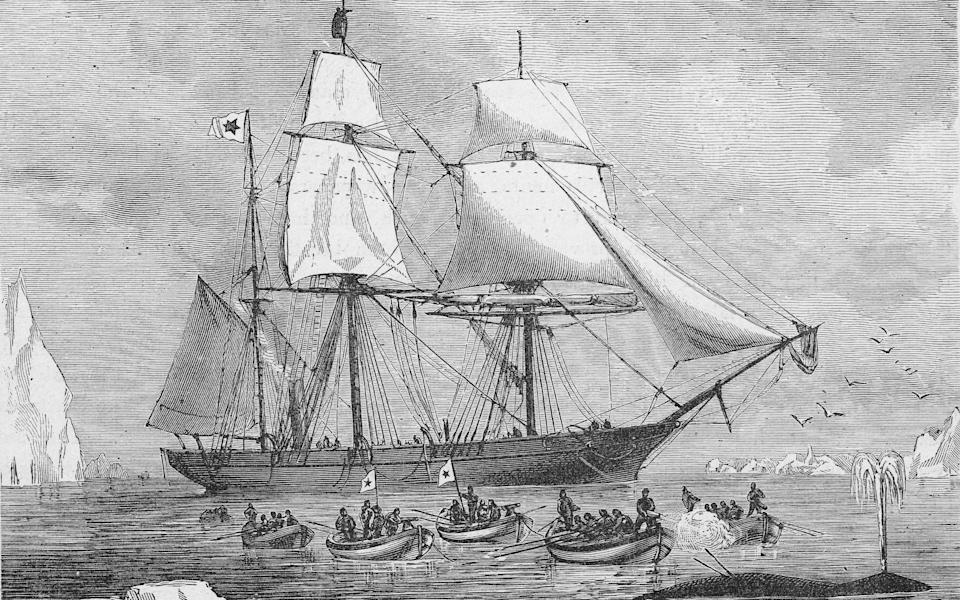 Whalers were among the first explorers - Getty