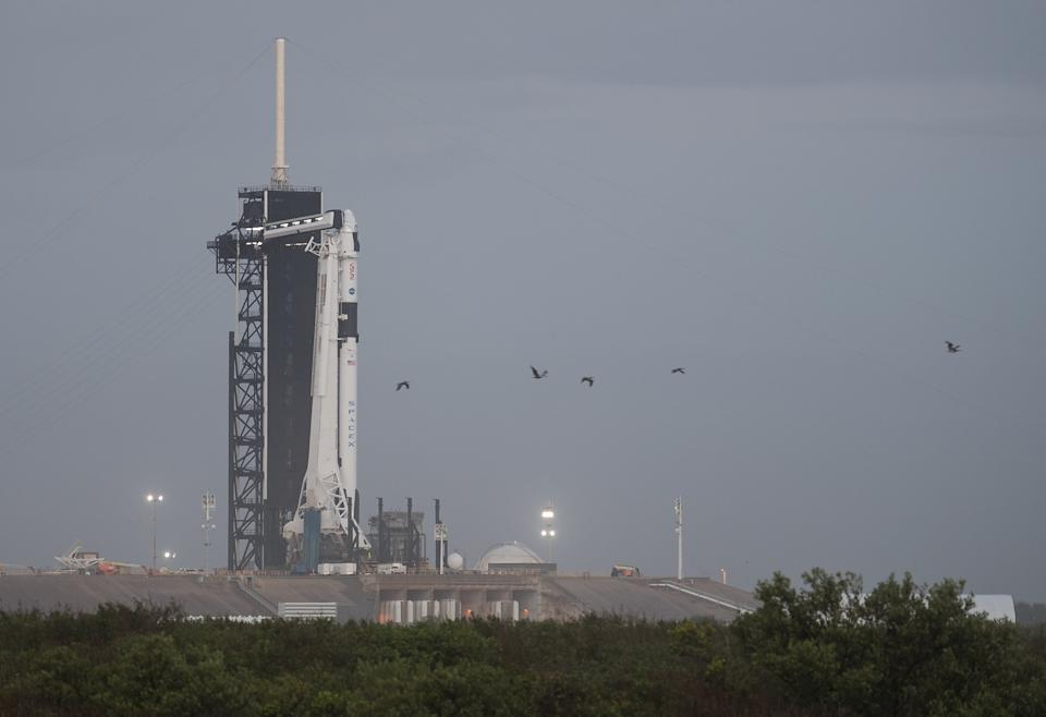 The SpaceX Falcon 9 rocket with the company's Crew Dragon spacecraft atop is seen at its launch pad at Kennedy Space Center in Florida.